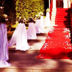 Sala de nunti Baia Mare